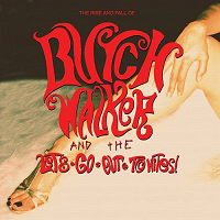 Butch Walker & The Lets-Go-Out-Tonites, 'Rise And Fall of...'